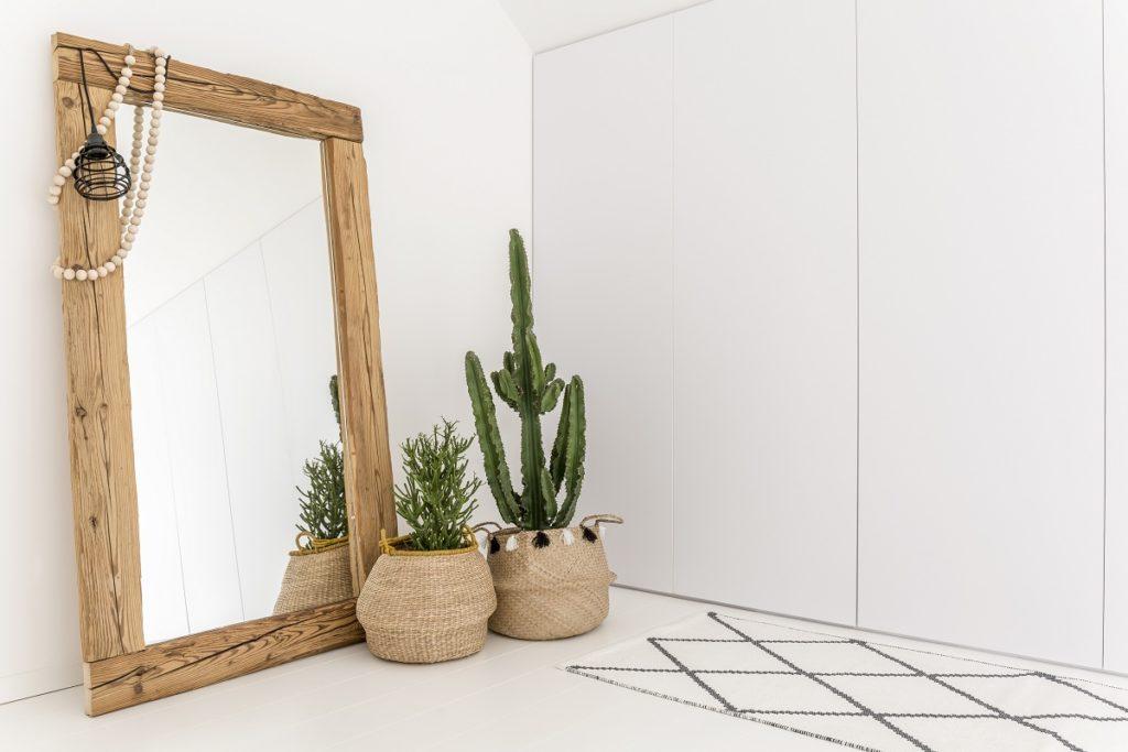 mirror and plant decor