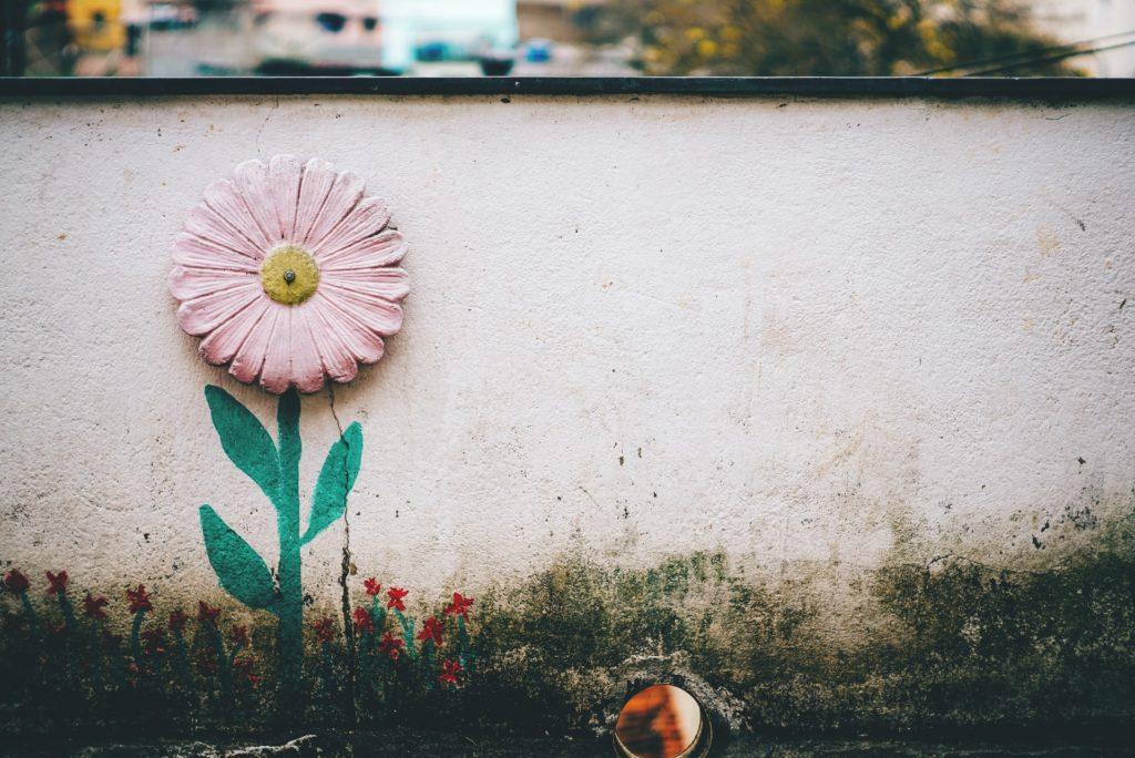 mold-on-walls