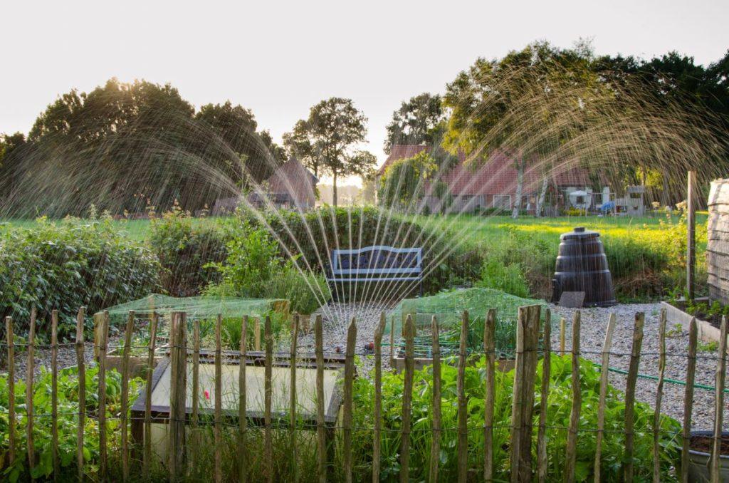 water sprinkler in the garden