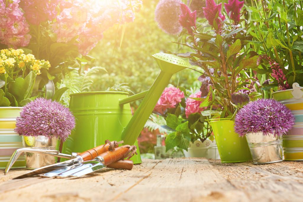 backyard gardening tools