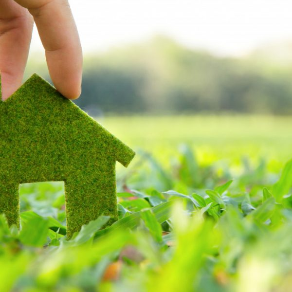Designing an Eco-friendly Home by Choosing Sustainable Materials